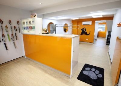 The DogGroomer Studio